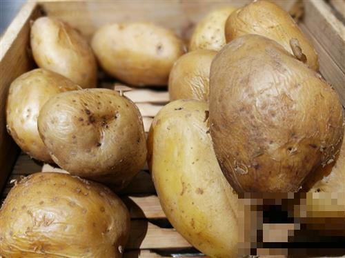 秋季进补要补对,多吃这7种食物,补养身体不添膘