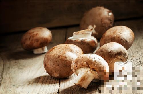 鲜蘑菇炒肉的做法是什么?