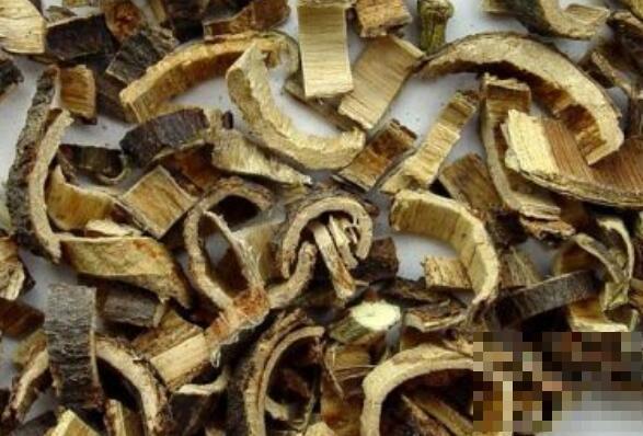 合欢皮的功效与作用 合欢皮的禁忌