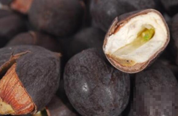 莲子壳泡茶的功效与作用