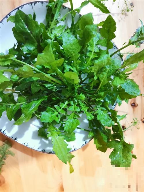 春分养肝好时节,这些养肝蔬菜应该多吃